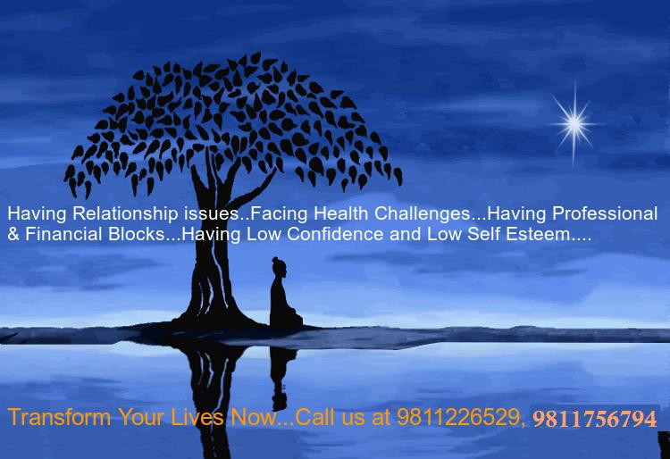 meditation-bodhi-tree
